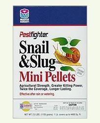 34_snail